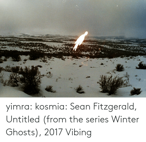 sean: yimra: kosmia:  Sean Fitzgerald, Untitled (from the series Winter Ghosts), 2017   Vibing