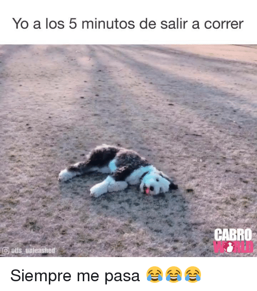 Memes, Yo, and Otis: Yo a los 5 minutos de salir a correr  CABRO  WORLD  (3 otis, unleashed' Siempre me pasa 😂😂😂