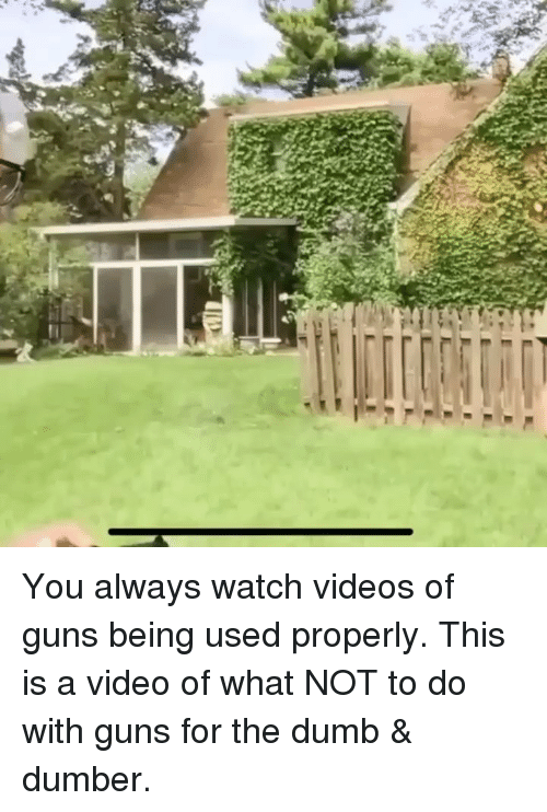 Dumb, Guns, and Memes: You always watch videos of guns being used properly. This is a video of what NOT to do with guns for the dumb & dumber.