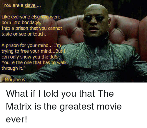 25 Best Memes About Morpheus What If I Told You Morpheus What