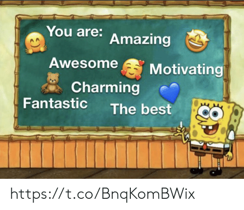 Memes, Best, and Amazing: You are: Amazing  Awesome  Motivating  Charming  Fantastic  The best https://t.co/BnqKomBWix