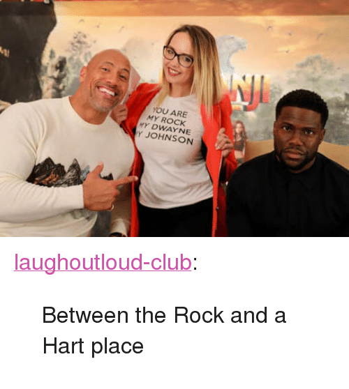 "my rock: YOU ARE  MY ROCK  Y DWAYNE  Y JOHNSON <p><a href=""http://laughoutloud-club.tumblr.com/post/169592700392/between-the-rock-and-a-hart-place"" class=""tumblr_blog"">laughoutloud-club</a>:</p>  <blockquote><p>Between the Rock and a Hart place</p></blockquote>"