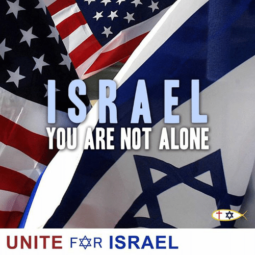 Being Alone, Memes, and Israel: YOU ARE NOT ALONE  UNITE FR ISRAEL