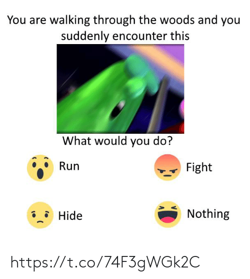 Run, Fight, and Hide: You are walking through the woods and you  suddenly encounter this  What would you do?  Run  Fight  Nothing  Hide https://t.co/74F3gWGk2C