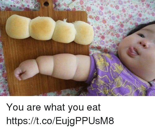 Memes, 🤖, and You: You are what you eat https://t.co/EujgPPUsM8