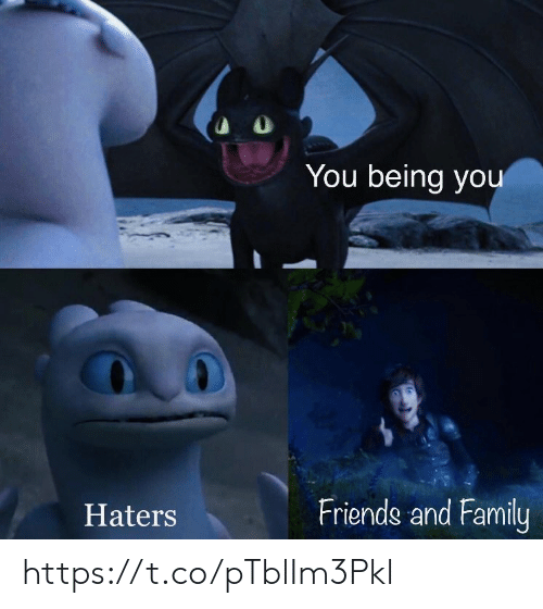 Family, Friends, and Memes: You being you  Friends and Family  Haters https://t.co/pTblIm3Pkl