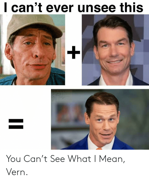 See What: You Can't See What I Mean, Vern.