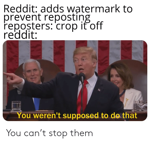 stop: You can't stop them