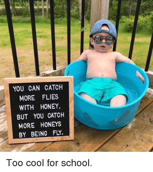 Dank, School, and Cool: YOU CAN CATCH  MORE FLIES  WITH HONEY.  BUT YOU CATCH  MORE HONEYS  BY BEING FLY Too cool for school.