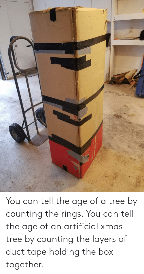 Tree, Layers, and Artificial: You can tell the age of a tree by counting the rings. You can tell the age of an artificial xmas tree by counting the layers of duct tape holding the box together.