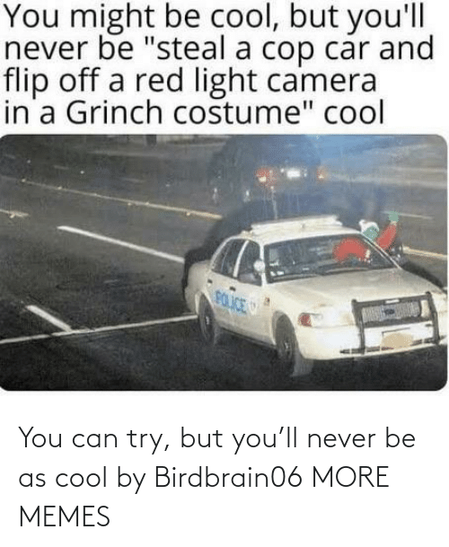 Cool: You can try, but you'll never be as cool by Birdbrain06 MORE MEMES