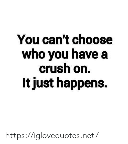Crush, Net, and Who: You can't choose  who you have a  crush on.  It just happens. https://iglovequotes.net/