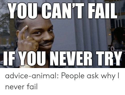 Advice Animal: YOU CAN'T FAIL  Oeing  IF YOU NEVER TRY advice-animal:  People ask why I never fail