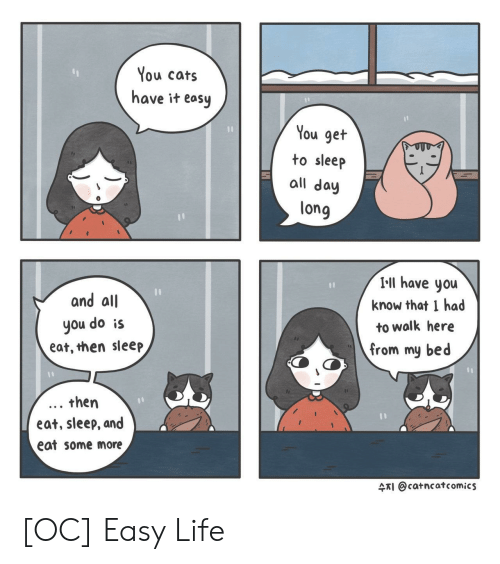 Cats, Life, and Some More: You cats  have it easy  You get  to sleep  all day  long  and all  you do is  eat, then sleep  I-ll have you  know that I had  to walk here  from my bed  . then  eat, sleep, and  eat some more  4TI @catncatcomics [OC] Easy Life
