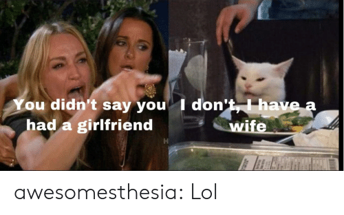 Lol, Tumblr, and Blog: You didn't say you I don't,I have a  had a girlfriend  wife awesomesthesia:  Lol