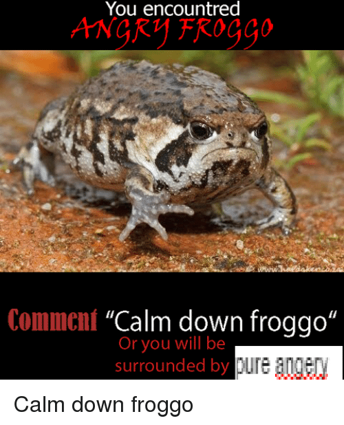 "Dank Memes, Surrounded, and Froggo: You encountred  Comment ""Calm down froggo  Or you will be  surrounded by  A Calm down froggo"