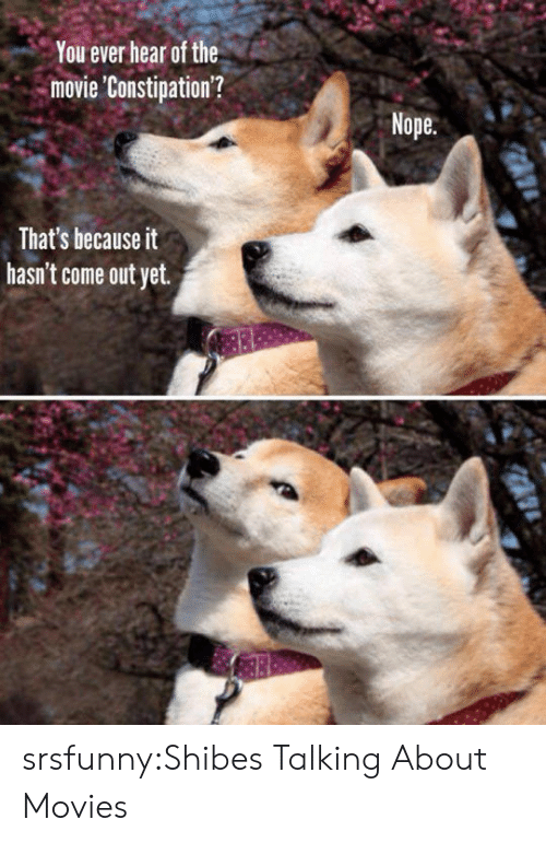 Shibes: You ever hear of the  movie 'Constipation'?  Nope  That's because it  hasn't come out yet. srsfunny:Shibes Talking About Movies