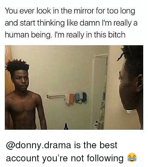 Bitch, Memes, and Best: You ever look in the mirror for too long  and start thinking like damn l'm really a  human being. I'm really in this bitch @donny.drama is the best account you're not following 😂
