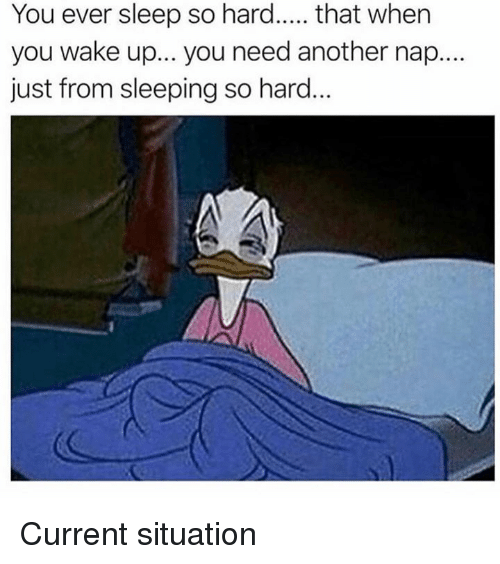 Memes, Sleeping, and Sleep: You ever sleep so hard... that when  you wake up... you need another nap....  just from sleeping so hard. Current situation