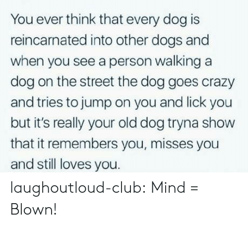 Club, Crazy, and Dogs: You ever think that every dog is  reincarnated into other dogs and  when you see a person walking a  dog on the street the dog goes crazy  and tries to jump on you and lick you  but it's really your old dog tryna show  that it remembers you, misses you  and still loves you. laughoutloud-club:  Mind = Blown!