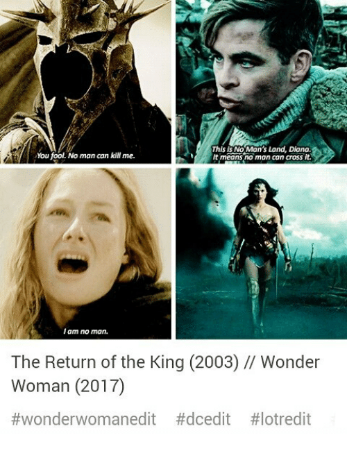 return of the king: You fool. No man can kill me.  This is No Man's Land, Diana.  t means no man can cross it.  I am no mon.  The Return of the King (2003) // Wonder  Woman (2017)