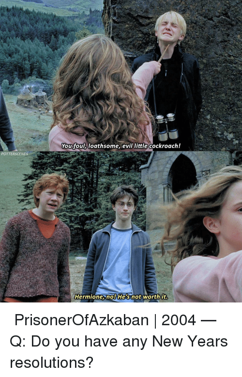 Any New: You foul, loathsome, evil little cockroach!  POTTERSCENES  Hermione. nol He's not worth it ➙ PrisonerOfAzkaban | 2004 — Q: Do you have any New Years resolutions?
