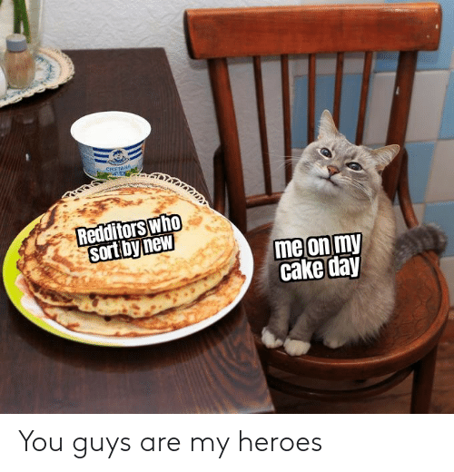 guys: You guys are my heroes