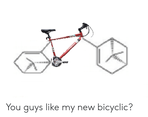 New, You, and Like: You guys like my new bicyclic?