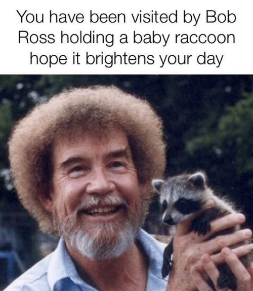 You Have Been Visited By: You have been visited by Bob  Ross holding a baby raccoon  hope it brightens your day