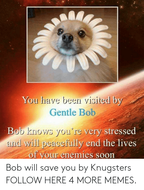 Been Visited: You have been visited by  Gentle Bob  Bob knows you're very stressed  and will peacefully end the lives  of your enemies soon Bob will save you by Knugsters FOLLOW HERE 4 MORE MEMES.