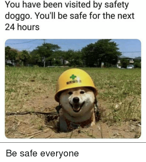 Been, Doggo, and Next: You have been visited by safety  doggo, You'll be safe for the next  24 hours Be safe everyone