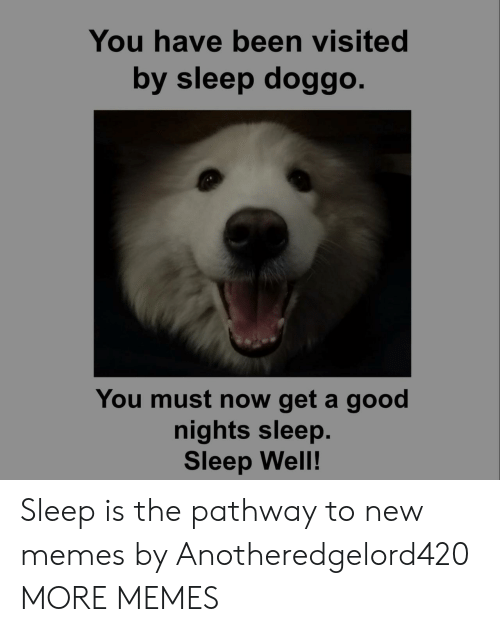 new memes: You have been visited  by sleep doggo  You must now get a good  nights sleep.  Sleep Well! Sleep is the pathway to new memes by Anotheredgelord420 MORE MEMES