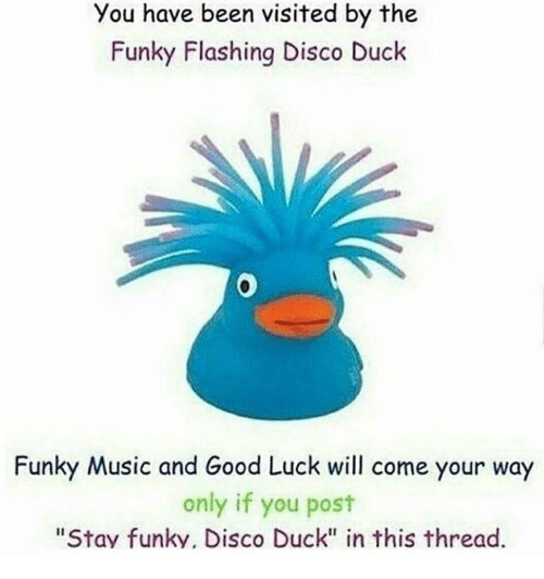 """Music, Duck, and Good: You have been visited by the  Funky Flashing Disco Duck  0  Funky Music and Good Luck will come your way  only if you post  """"Stav funky. Disco Duck"""" in this thread."""