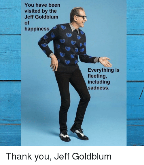 Thank You, Happiness, and Jeff Goldblum: You have been  visited by the  Jeff Goldblum  of  happiness  Everything is  fleeting,  including  sadness. Thank you, Jeff Goldblum