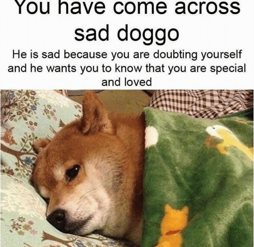 doggo: You have come acrosS  sad doggo  He is sad because you are doubting yourself  and he wants you to know that you are special  and loved