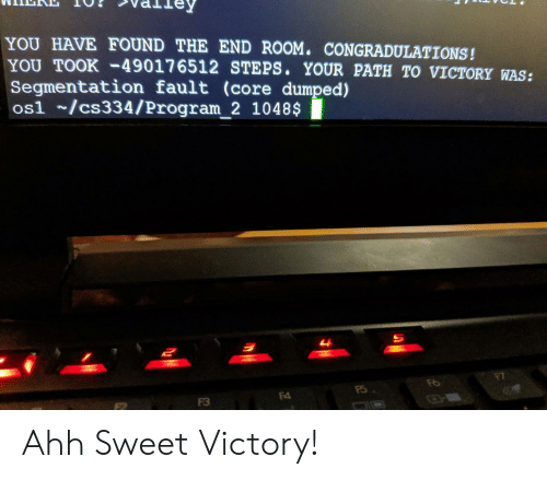 Core, You, and Program: YOU HAVE FOUND THE END ROOM. CONGRADULATIONS!  YOU TOOK-49017 6512 STEPS. YOUR PATH TO VICTORY WAS:  Segmentation fault (core dumped)  os1 /cs334/Program_2 1048$  म  F4  F3 Ahh Sweet Victory!