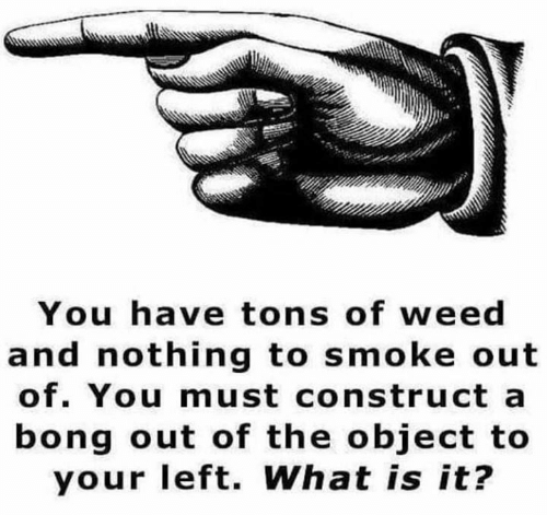 Memes, Weed, and What Is: You have tons of weed  and nothing to smoke out  of. You must construct a  bong out of the object to  your left. What is it?