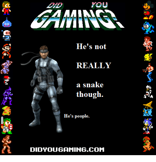 Snake, Com, and You: YOU  He's not  REALLY  a snake  though.  He's people.  DIDYOUGAMING.COM