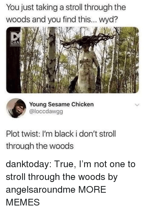 Dank, Memes, and True: You just taking a stroll through the  woods and you find this... wyd?  Young Sesame Chicken  @loccdawgg  Plot twist: I'm black i don't stroll  through the woods danktoday:  True, I'm not one to stroll through the woods by angelsaroundme MORE MEMES
