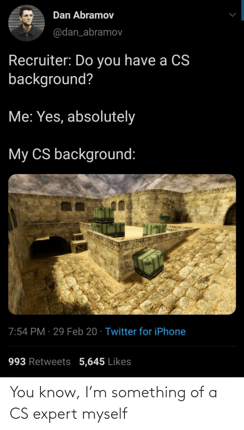 Expert: You know, I'm something of a CS expert myself