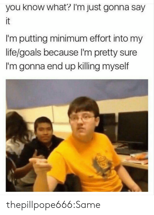 life goals: you know what? I'm just gonna say  it  I'm putting minimum effort into my  life/goals because I'm pretty sure  I'm gonna end up killing myself thepillpope666:Same