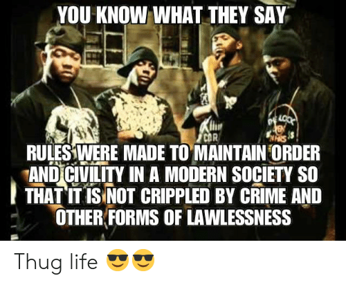 Civility: YOU KNOW WHAT THEY SAY  LOOK  CDR  RULES WERE MADE TO MAINTAIN ORDER  AND CIVILITY IN A MODERN SOCIETY SO  THAT IT IS NOT CRIPPLED BY CRIME AND  OTHER FORMS OF LAWLESSNESS Thug life 😎😎