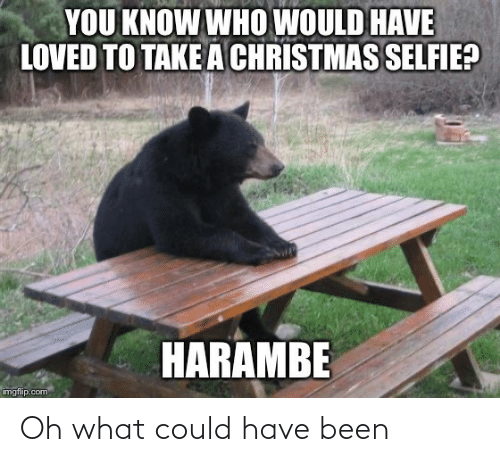 you-know-who: YOU KNOW WHO WOULD HAVE  LOVED TO TAKE A CHRISTMAS SELFIE?  HARAMBE  imgflip.com Oh what could have been