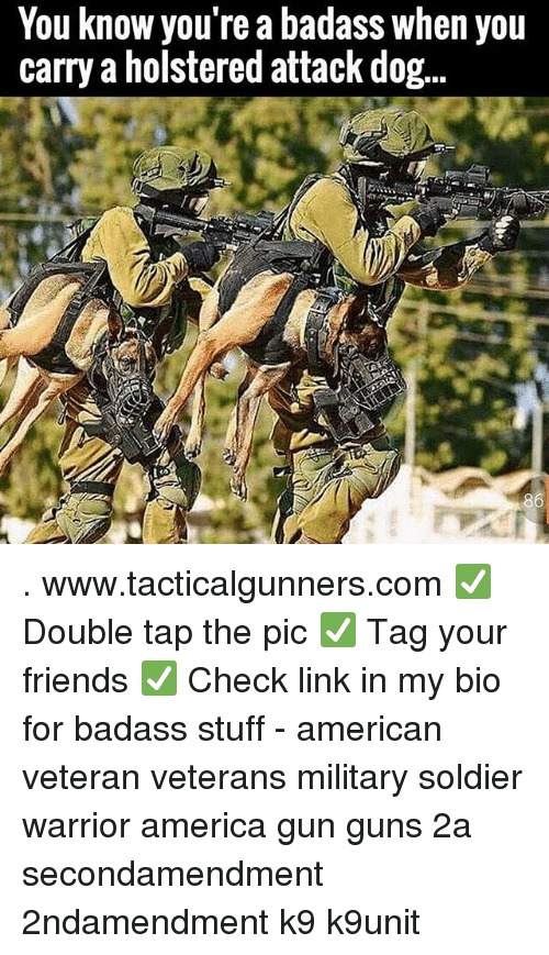 America, Friends, and Guns: You know you're a badass when you  carry a holstered attack dog... . www.tacticalgunners.com ✅ Double tap the pic ✅ Tag your friends ✅ Check link in my bio for badass stuff - american veteran veterans military soldier warrior america gun guns 2a secondamendment 2ndamendment k9 k9unit