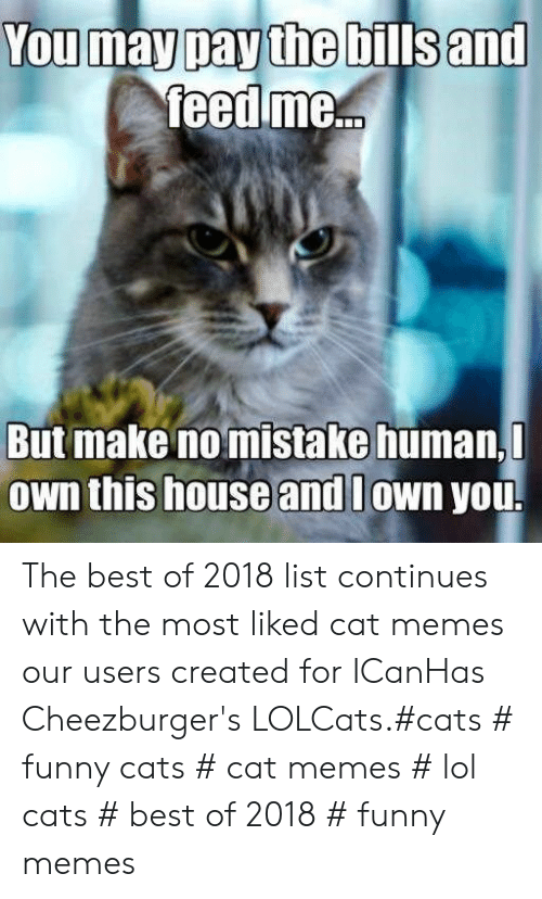 Cat Memes: You may pay the bills and  feed me...  But make no mistake human,  Own this house and lown you. The best of 2018 list continues with the most liked cat memes our users created for ICanHas Cheezburger's LOLCats.#cats # funny cats # cat memes # lol cats # best of 2018 # funny memes