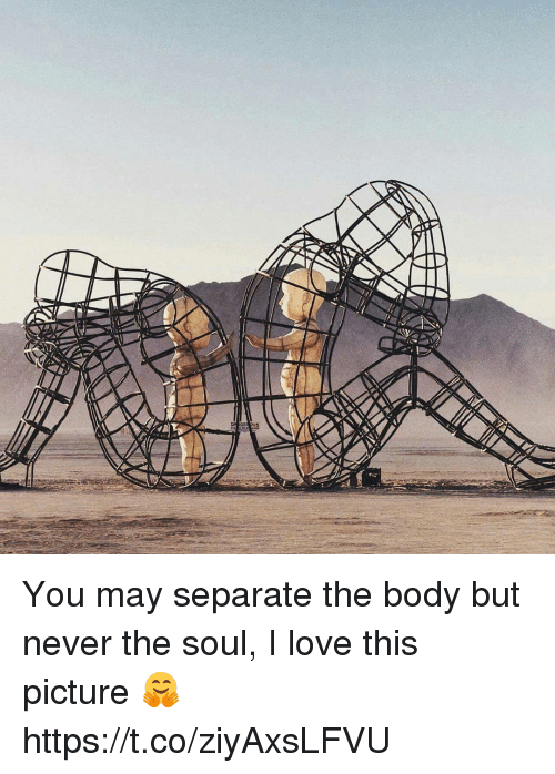 Love, Memes, and Never: You may separate the body but never the soul, I love this picture 🤗 https://t.co/ziyAxsLFVU