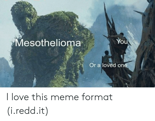 Love, Meme, and Mesothelioma: You  Mesothelioma  Or a loved on I love this meme format (i.redd.it)