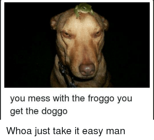 Dank Memes, Doggo, and Easy: you mess with the froggo you  get the doggo Whoa just take it easy man
