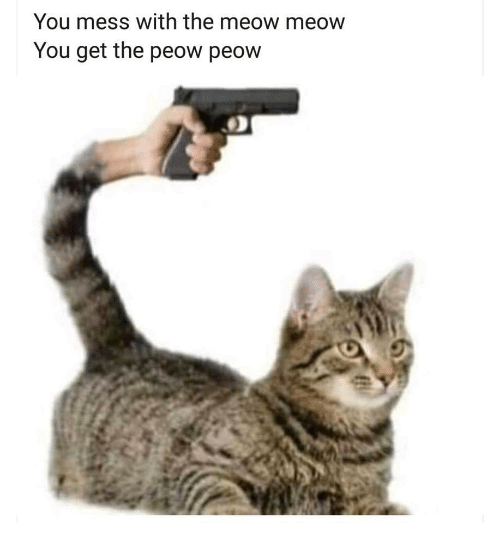 You, Mess, and Meow: You mess with the meow meow  You get the peow peow