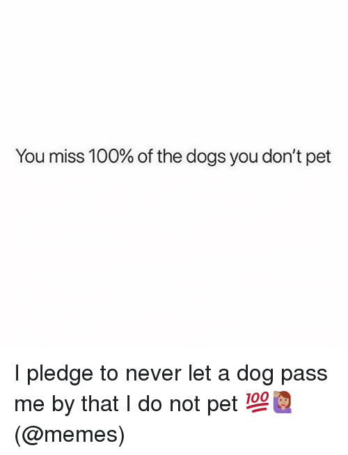 Anaconda, Dogs, and Memes: You miss 100% of the dogs you don't pet I pledge to never let a dog pass me by that I do not pet 💯🙋🏽‍♀️(@memes)